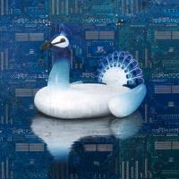 Inflatbale Peacock